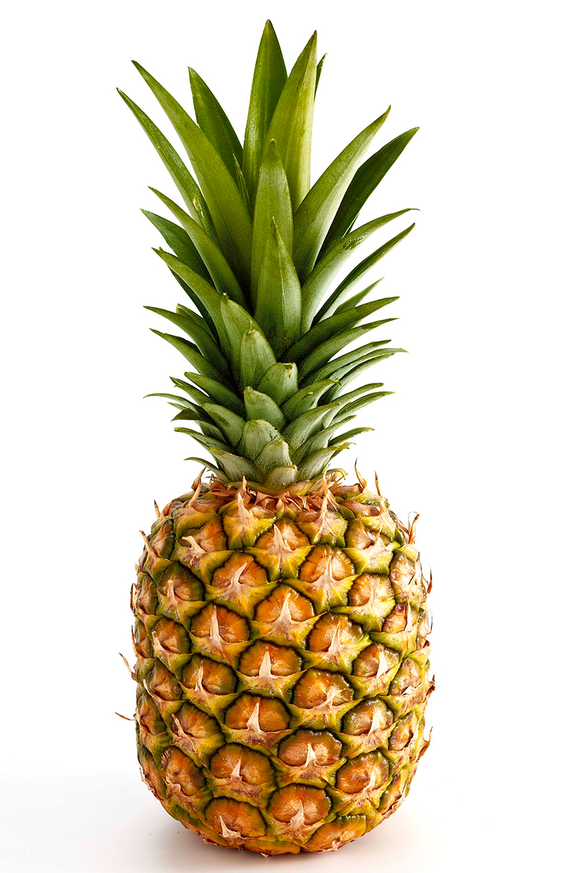 ananas-pineapple-import-export