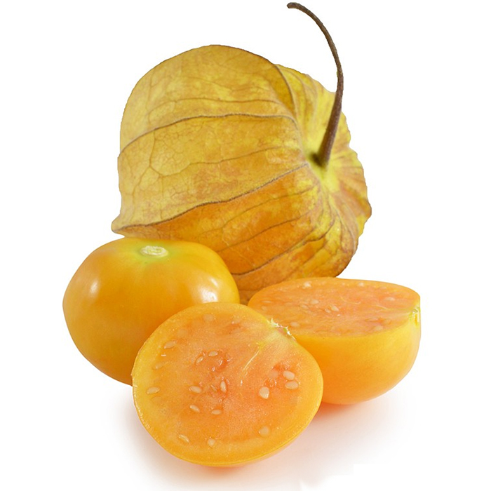 Physalis-import-export-germany